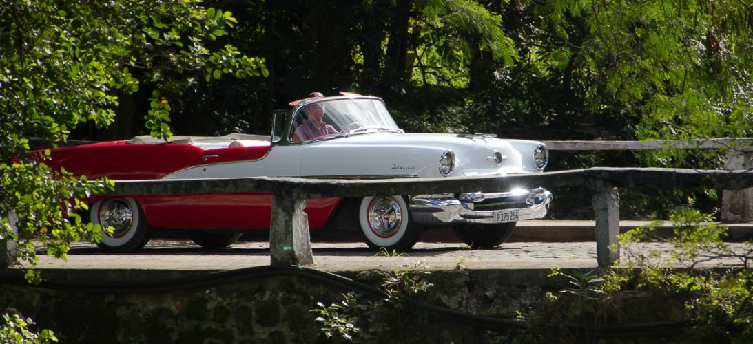 1955 olds in havana forest