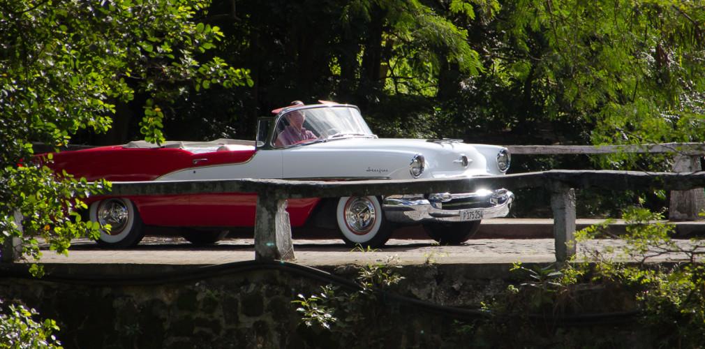 in havana forest, classic car in habana